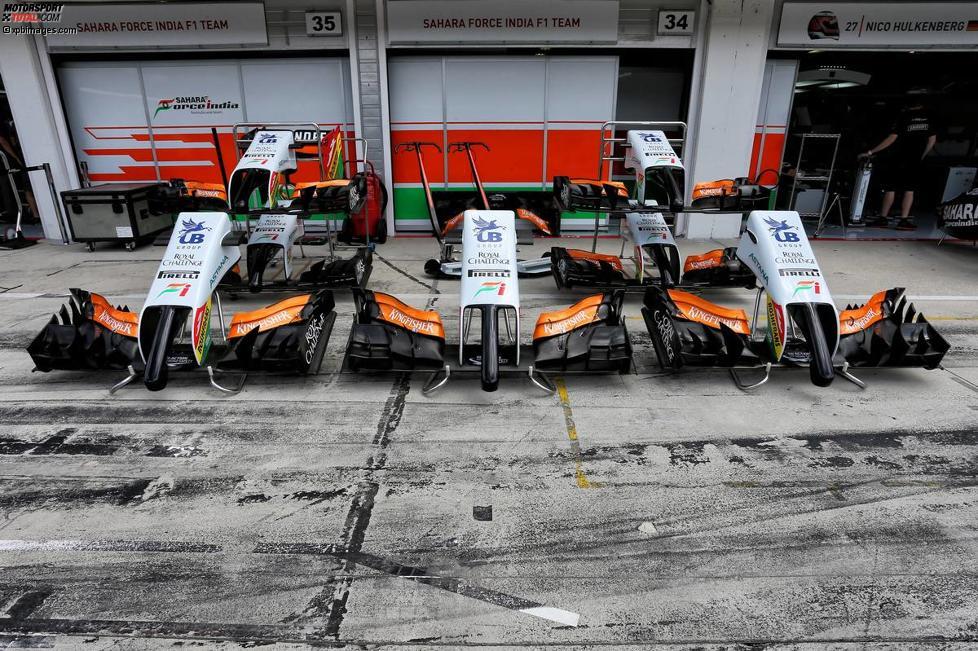 Nasen des Force India