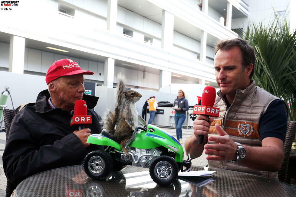 Kurioses Geschenk von Bernie Ecclestone an Niki Lauda: Das Eichhörnchen auf dem grünen Quad hat der Formel-1-Boss bei einer Auktion in London ersteigert - und dem Mercedes-Boss in einer Schachtel in die Silberpfeil-Hospi geschickt, weil er es für eine Ratte hielt. Denn: Laudas Spitzname in seiner aktive Zeit war