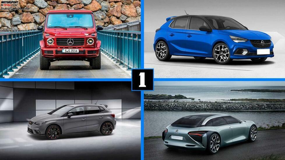 Warum gibt es eigentlich keinen Cupra Ibiza? Hier sind zehn nicht existierende Modellversionen, die wir aber gerne sehen würden ...