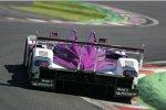 Jos Verstappen (Porsche RS Spyder)