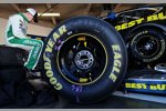 Rookie-of-the-Year-Anwärter Ricky Stenhouse in der Roush-Box