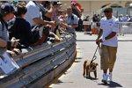 Lewis Hamilton (Mercedes) mit seinem Hund Roscoe