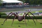 Charlottes Web und die IndyCars