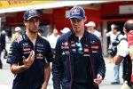 Daniel Ricciardo (Red Bull) und Daniil Kwjat (Toro Rosso)