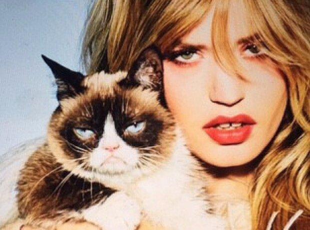 """worst photo shoot ever"""": grumpy cat wirbt für opel"""