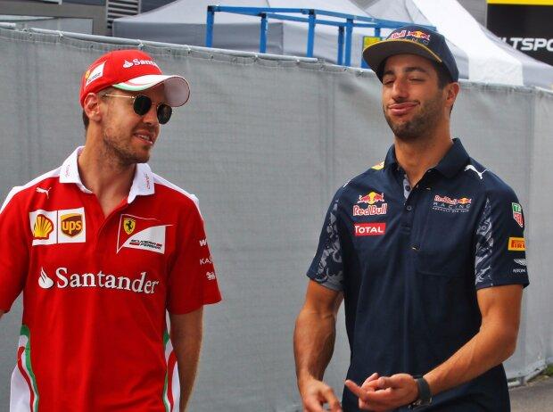 Sebastian Vettel, Daniel Ricciardo