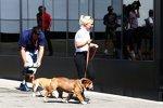 Hunde Roscoe & Coco von Lewis Hamilton (Mercedes)