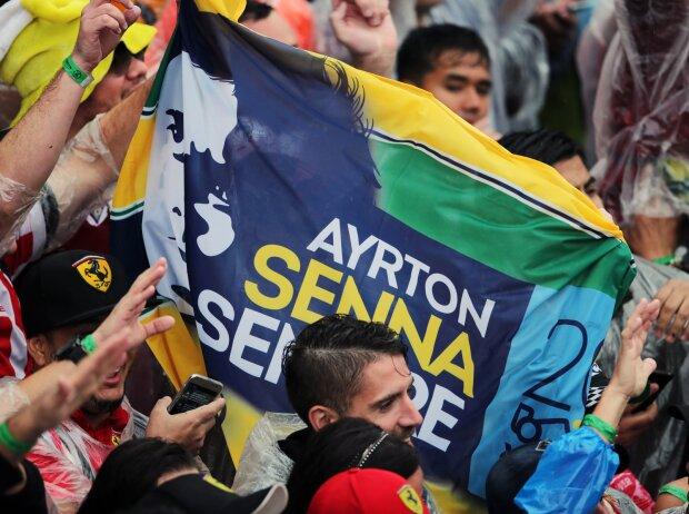 Fans in Brasilien