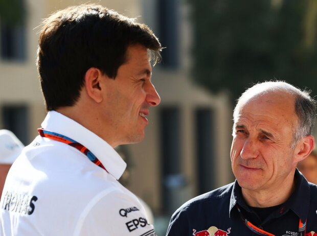 Toto Wolff, Franz Tost
