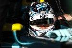 Nelson Piquet Jun. (NextEV)