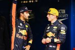 Daniel Ricciardo (Red Bull) und Max Verstappen (Red Bull)