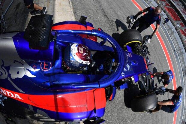 Sean Gelael Toro Rosso Red Bull Toro Rosso Honda F1 ~Sean Gelael ~