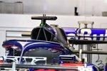 Halo des Toro Rosso