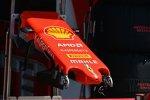 Nase des Ferrari