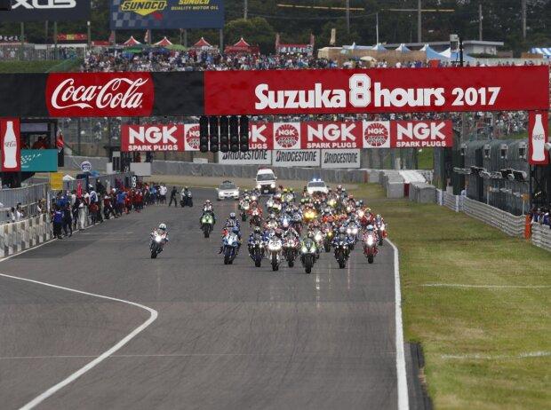 Start 8h Suzuka