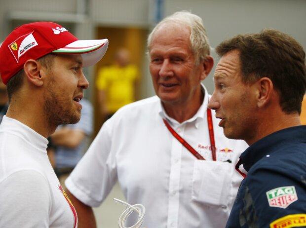Sebastian Vettel, Helmut Marko, Christian Horner