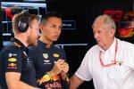 Alexander Albon (Red Bull) und Helmut Marko
