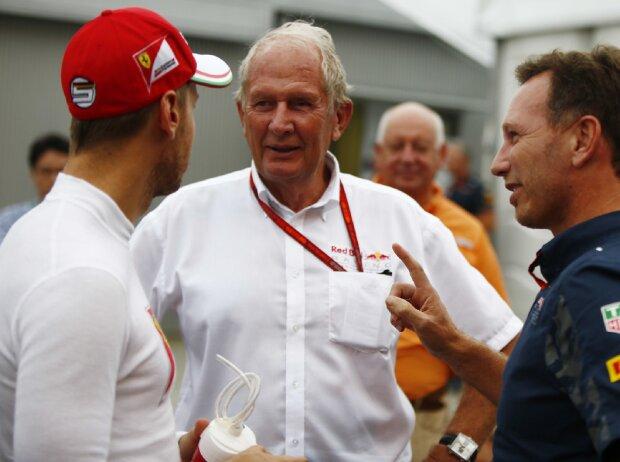 Sebastian Vettel, Helmut Marko