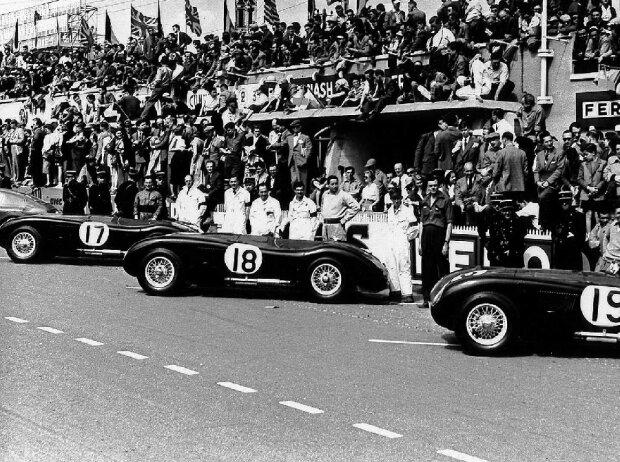 Der Jaguar C-Type 1953 in Le Mans