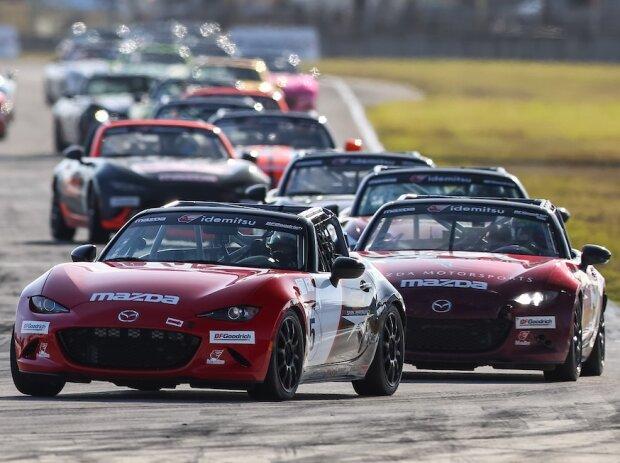 Mazda MX5, Mazda-MX-5-Cup