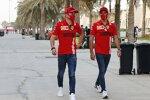 Charles Leclerc (Ferrari) und Carlos Sainz (Ferrari)