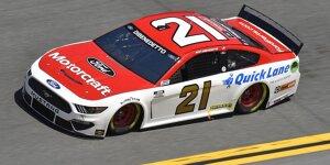 Die Autos der NASCAR Cup-Saison 2021