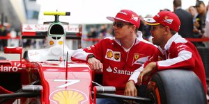Frag Gary Anderson: Leisten Vettel und R�ikk�nen genug?