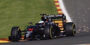 Fernando Alonso fordert WM-Titel: Volle Konzentration auf 2017