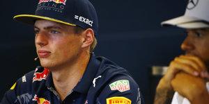 Max Verstappen f�r User unsympathischster Formel-1-Fahrer