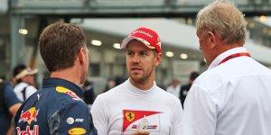 "Ferrari für Red Bull Titelkandidat: ""Vettel hatte so viel Pech"""