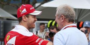 WM-Kampf 2017: Helmut Marko setzt auf Sebastian Vettel