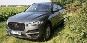Jaguar F-Pace 30d AWD Test: Bilder, Preis, Daten, Anhängelast