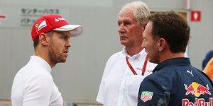Emotionale Ausraster: Wegbegleiter verteidigen Vettel
