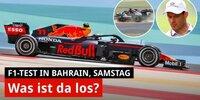Bahrain-Test, Tag 2: Hamilton kämpft mit dem W12!