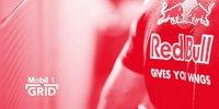 Das Toro-Rosso-Konzept