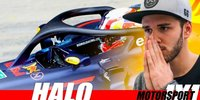 Motorsport 1x1: Daniel Abt über Halo