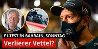 Surers Fazit der Tests: Red Bull top, Vettel Flop!